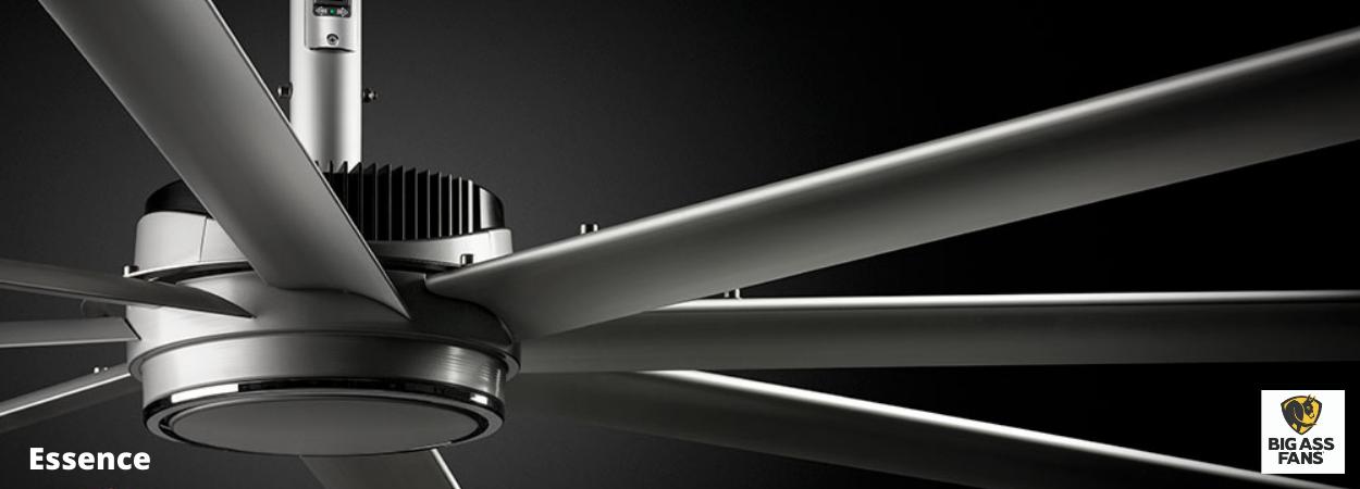Quạt trần Essence của Mỹ - Mẫu quạt trần thường mại cánh lớn rất được ưa chuộng